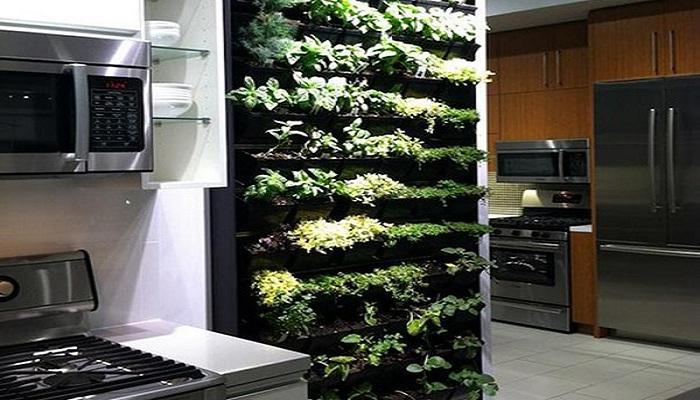 come avere un mini orto in casa rafaschieri arredamenti